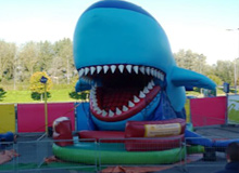 Happende haai of draak